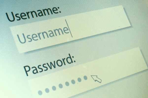 Username and password fields on a computer screen
